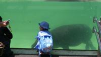動物園かば