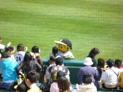阪神vs巨人オープン戦4