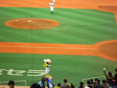 阪神vs横浜in京セラドーム3