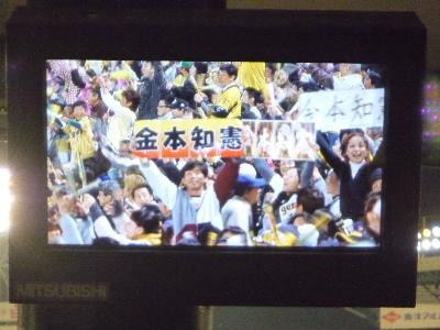 阪神vs広島10