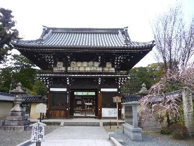 梅宮神社2