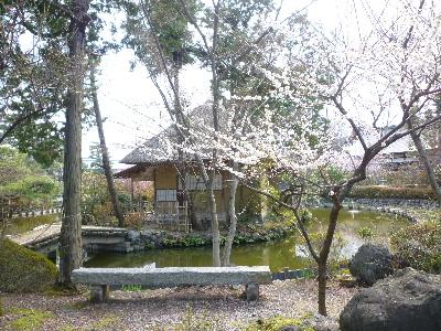 梅宮神社8
