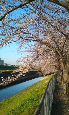 新幹線公園3