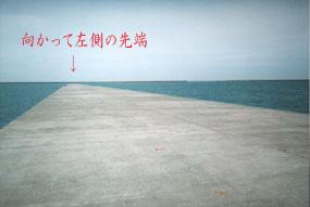 tomakomai3.jpg