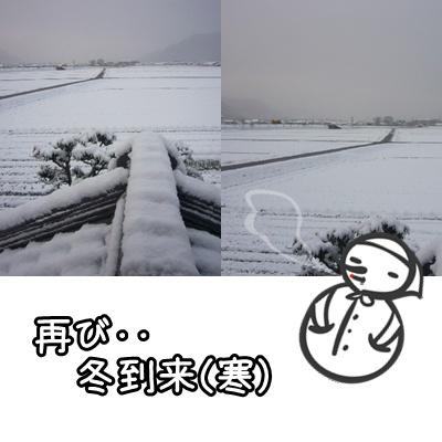 再び冬(2月17日)