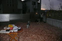 2009bokuvodka-058.jpg