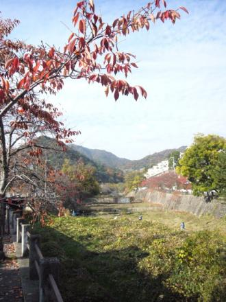 2009120403.jpg