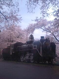 城山公園機関車