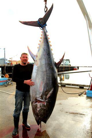 Tuna 2010_2961
