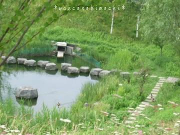 DSCF2500(2).jpg