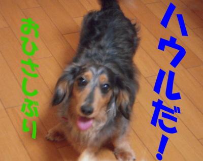 masahirofurano 021