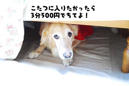08112002.jpg