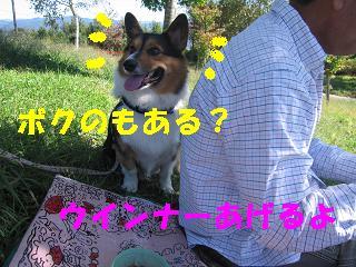 ゆぅのラン_20091011_0011