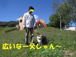 ゆぅのラン_20091011_0015