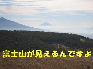 コピー ~ 画像 009