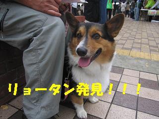 コピー ~ 工大祭 004