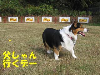 2009-11-15ゆうラン 017