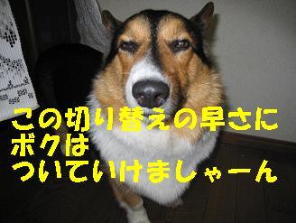 IMG_1472_2.jpg