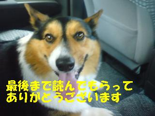 PA0_0210.jpg