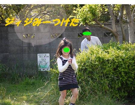 resize2704.jpg
