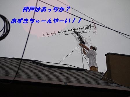 resize4601.jpg