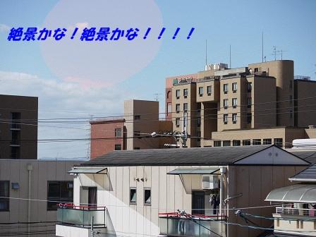 resize4611.jpg