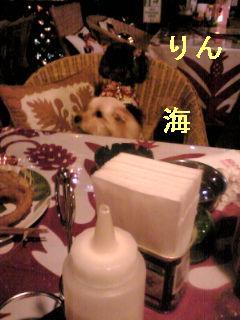 20091213192107.jpg