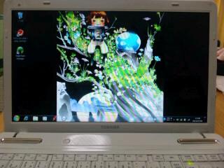 SH3J03080001.jpg