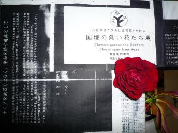 2009国境のない花達展 067s