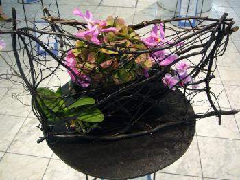 2009国境のない花達展 001s
