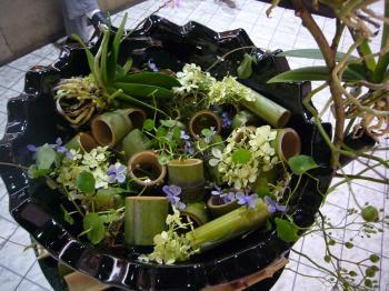 2009国境のない花達展 031s