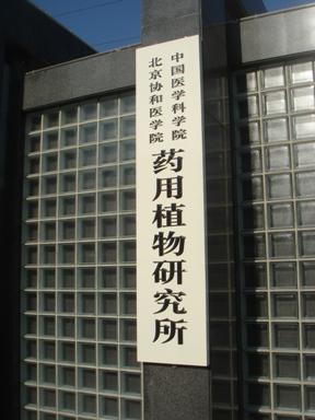 081205_002_yakuzen.jpg