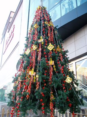 090104_02_tree.jpg