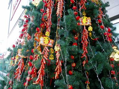 090104_03_tree.jpg