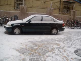 090218_snow_01.jpg