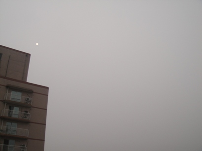 090722_nisshoku02(2).jpg
