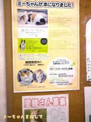 ミーちゃんポスター