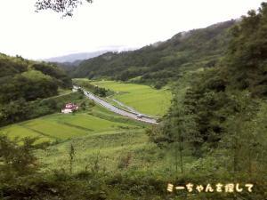 福島市の大波城址から撮ったひまわり畑