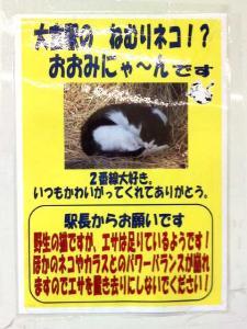 東武野田線・大宮駅のポスター