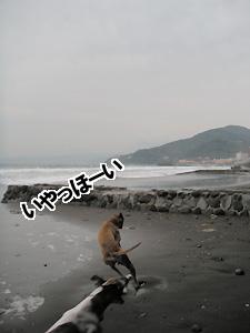 20090919_5.jpg