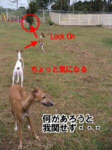 20090922_12.jpg