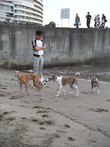 20090922_6.jpg