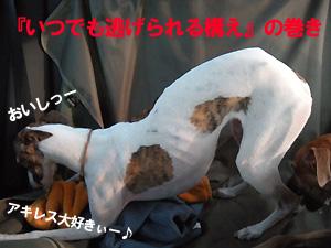 20090927_15.jpg