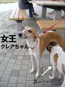 20090927_5.jpg