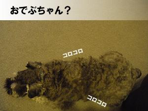 20091002_2.jpg