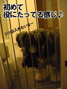 20091003_41.jpg