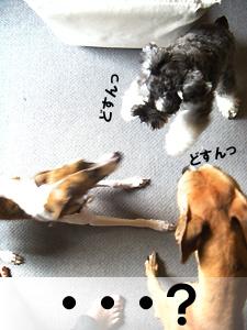 20091003_62.jpg