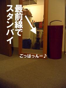 20091007_51.jpg