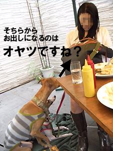 20091009_61.jpg