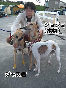 20091011_131.jpg